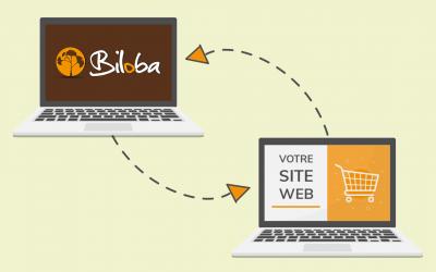 Illustration connexion entre le logiciel Biloba et les sites e-commerce